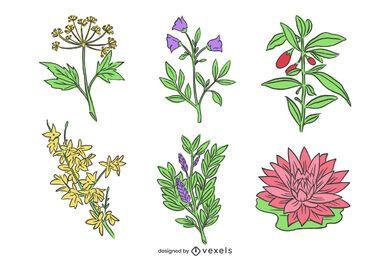 Pacote de flores chinesas desenhadas à mão