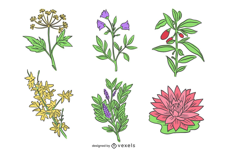 Paquete de flores chinas dibujadas a mano