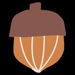 Herbst Eichel flach