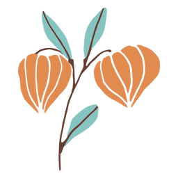 Blütenknospen flach