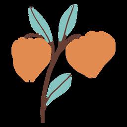 Botões de flores planas