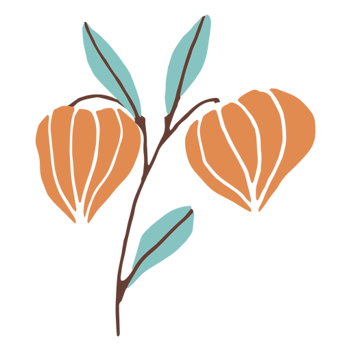 Flower buds flat Transparent PNG