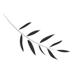Plano de rama delgada gris