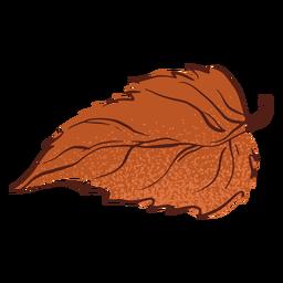 Folha de outono desenhada à mão