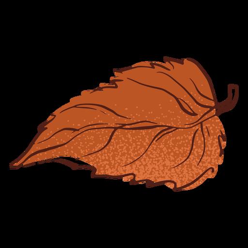 Autumn leaf hand drawn