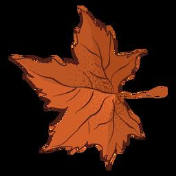 Outono maple leaf tipo mão desenhada