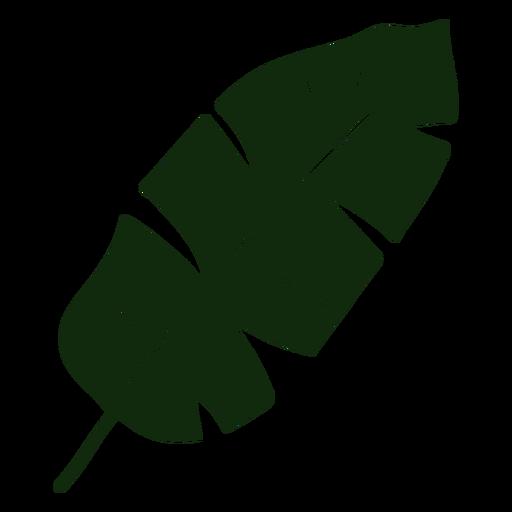 Banana leaf tropical tree hand drawn
