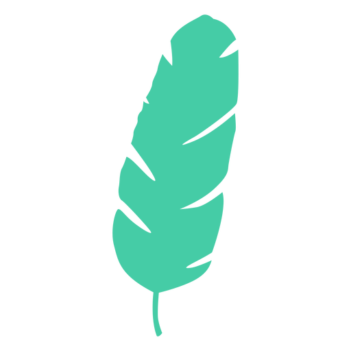 Banana leaf tropical tree silhouette