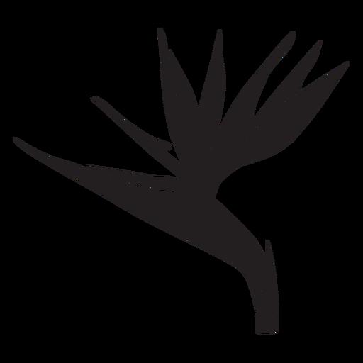 Bird of paradise flower silhouette