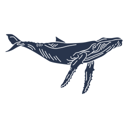 Blue whale sea animal silhouette