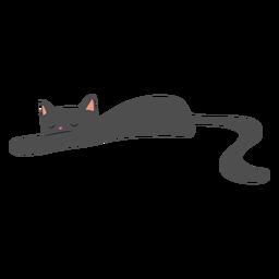 Katze schläft flach