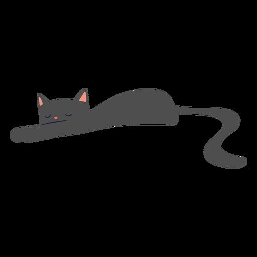 Cat sleeping flat
