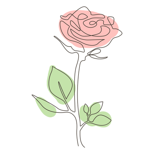 Colorful rose line drawing