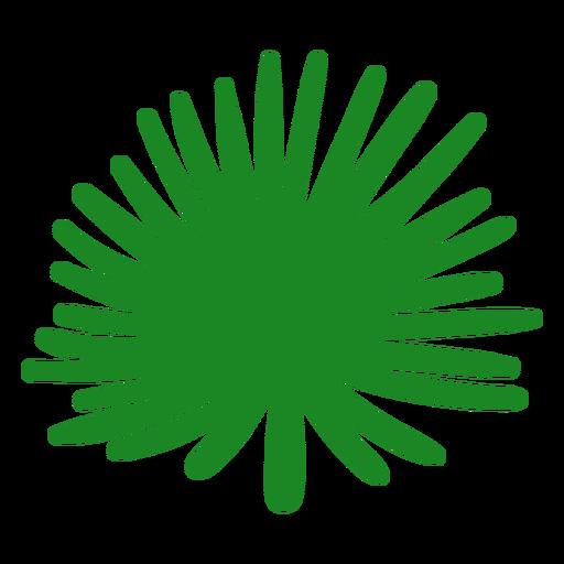 Fan palm leaf hand drawn