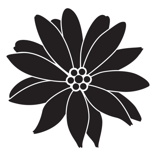 Flower tropical plant silhouette