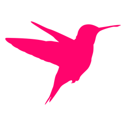 Flying hummingbird silhouette