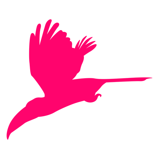 Flying toucan bird silhouette