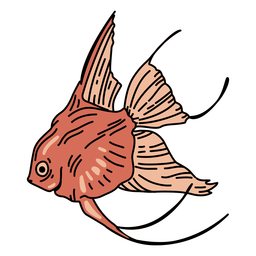 Peixinho, oceano, curso, peixe