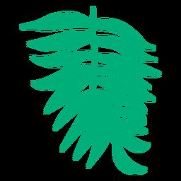 Palma de areca desenhada de mão