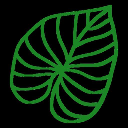 Planta tropical de hoja dibujada a mano