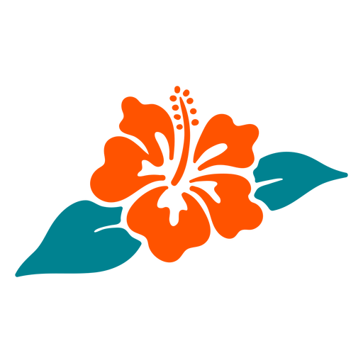 Hibiscus flower tropical hand drawn