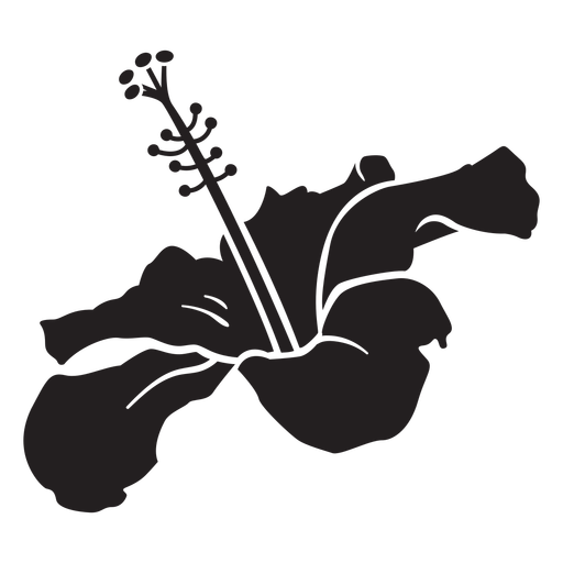 Hibiscus side view tropical flower silhouette Transparent PNG