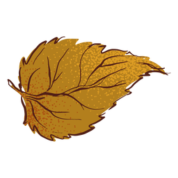 Leaf autumn fall hand drawn