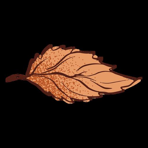 Dibujado a mano hoja otoño Transparent PNG