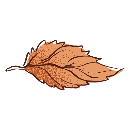 Leaf autumn hand drawn Transparent PNG