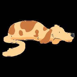 Perro perezoso acostado plano