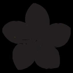 Silueta de flor de gloria de la mañana