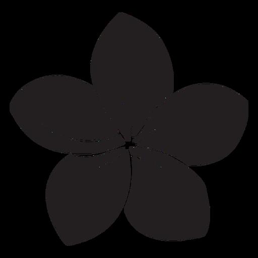 Morning glory flower silhouette