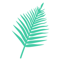 Silhueta tropical de folha de palmeira