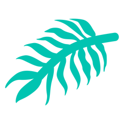 Palm tree leaf jungle element
