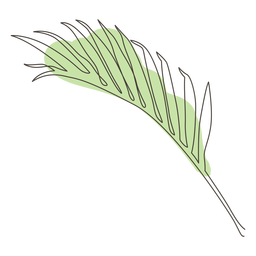 Palm leaf line drawing design