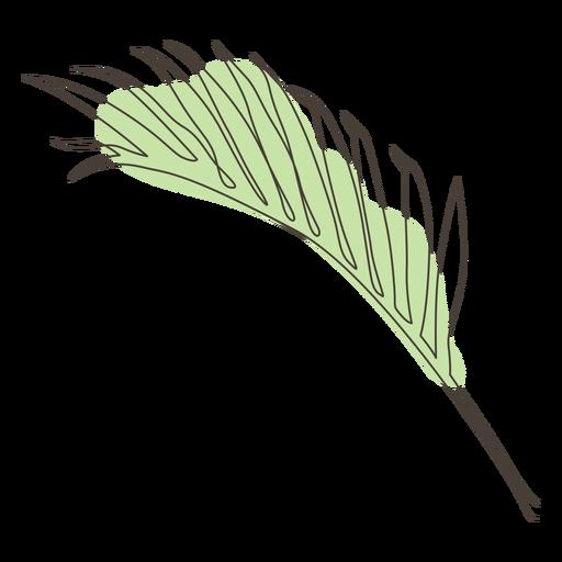 Palm leaf line drawing design Transparent PNG