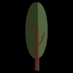 Plantar frondosa árvore plana