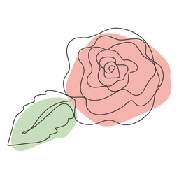 Rose flower line drawing stroke