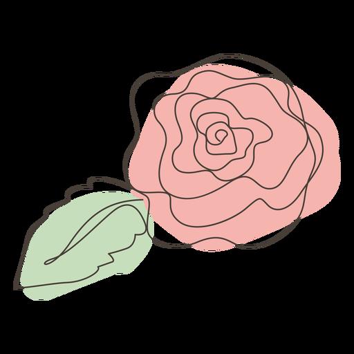 Rose Flower Line Drawing Stroke Transparent Png Svg Vector File