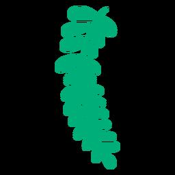Planta de hoja de helecho real dibujado a mano