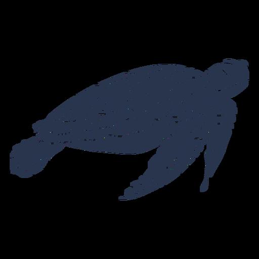 Sea turtle sea life silhouette