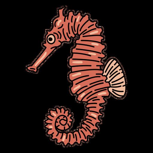 Seahorse fish stroke