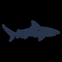 Shark silhouette fish