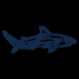 Animal de trazo de tiburón