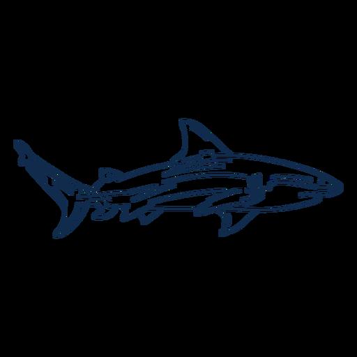 Animal de trazo de tibur?n
