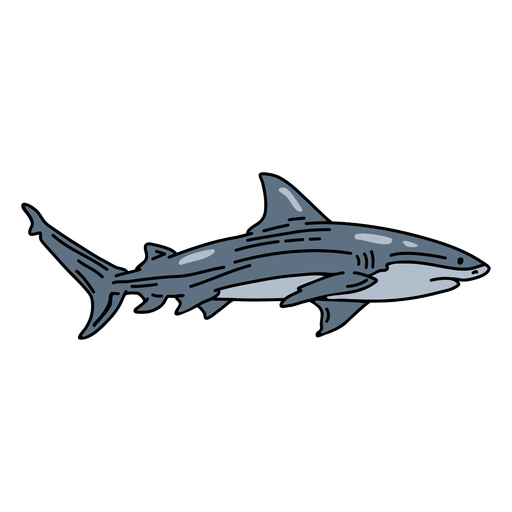 Pescado de trazo de tibur?n
