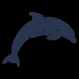 Silhouette dolphin aquatic mammal