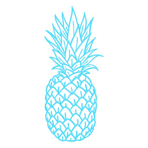 Silhouette pineapple tropical fruit
