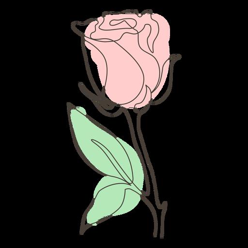 Dibujo lineal de una sola rosa frondosa