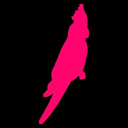 Silueta de pájaro cacatúa sentado